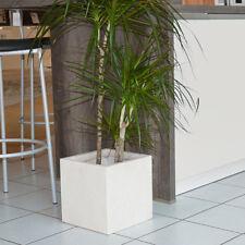 Sparen Sie 9,95 €! Eckiger Blumentrog Pflanzkübel Pflanztrog elfenbein 34 x 30cm