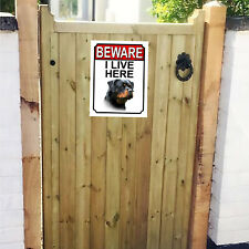 More details for beware i live here rotweiler sign 267mm x 200mm 1081h1