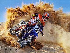 Racing Driver Full Drill Diamond Painting Motorcycle Desert Embroidery Art N9978