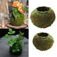 2 Pcs Creative Moss Ball Flower Pot Planter Bonsai Plant Holder Home Garden