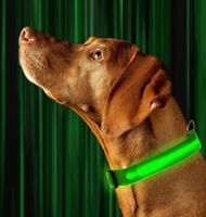 SAFETY LED Dog Pet Light Up Collar Night Glow Adjustable Bright 6 Colors Leash