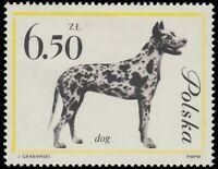POLOGNE / POLAND - 1963 - Mi.1382 6,50Zl Mastiff Dog - Mint*
