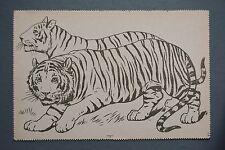 R&L Postcard: Raphael Tuck Paintbox Series, Tiger, Big Cat