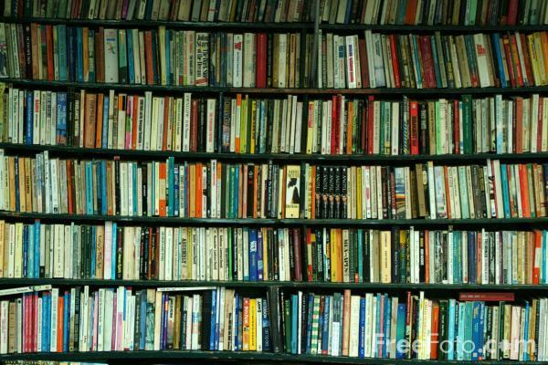 Strange Hill Books and More