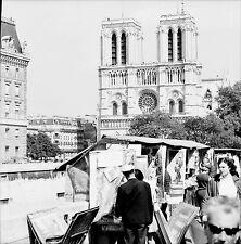 PARIS c. 1970 - Bouquinistes Cathédrale Notre-Dame - Négatif 6 x 6 - N6 P1