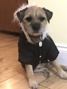 Reflective Padded Dog Jackets -Ideal way to keep you dog warm - FREE P & P