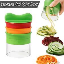 New Kitchen Vegetable Spiral Slicer Fruit Cutter Peeler Spiralizer Twister Tool