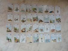 Jeu  - 36 Cartes de bonne aventure tarot divinatoire