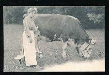 FARMING Switzerland Milking milk maid cow early u/b PPC