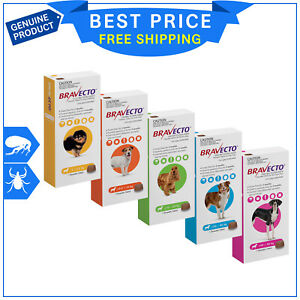 BRAVECTO for Dogs Tick and Flea Control 1 Chew for 3 months Protection All Sizes