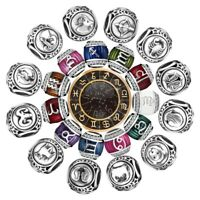 Constellations Zodiac Charms Bead  Fit 925 Silver Sterling Bracelets Necklace