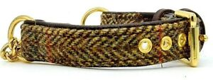 Green Harris tweed on Brown leather Martingale dog collar Solid brass hardware