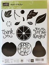Stampin Up APPLE OF MY EYE photopolymer stamps fruit apple orange pear thank you