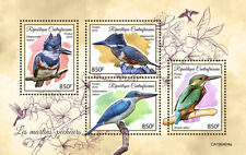 Central Africa 2019 fauna Kingfishers  S201907