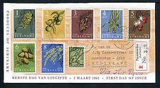 Suriname FDC E16A_  1 (? nieuw) M, met adres ; druk: Via Air Mail, extra zegel