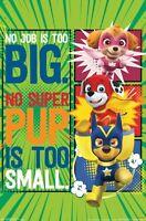 PAW PATROL - SUPER PUPS POSTER - 22x34 - 15234