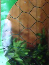 Pvc Coated Garden Netting Chicken Rabbit Wire Mesh Roll 10m x 13mm x 500mm 10135