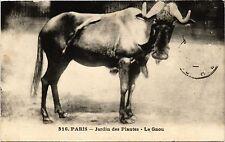 CPA Paris 5e-Jardin des Plantes-Le Gnou (324434)