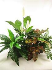 95cm Wide 'Swan Lake' Mixed Artificial Silk Greenery Plant Display
