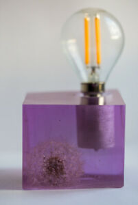 Epoxy resin lamp with real dandelion