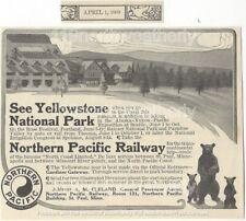 vtg 1909 NORTHERN PACIFIC RAILWAY AD Yellowstone National Park BEARS train rr