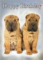 Shar Pei Dog Design A6 Textured Birthday Card BDSHARPEI-3 by paws2print