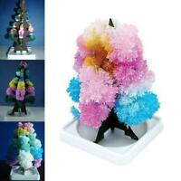 Kids Growing Crystal Tree Kit Christmas Paper Science Toy Decors Z5A3