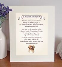 Lhasa Apso Thank You FROM THE DOG 8 x 10 Picture/10x8 Print Fun Novelty Gift