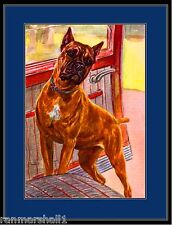 English Print Boxer Dog Dogs Puppy Puppies Vintage Poster Art Picture w/border