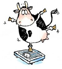 PENNY BLACK RUBBER STAMPS UTTERLY FABULOUS COW  NEW STAMP 2010