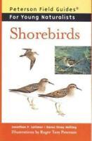 Shorebirds Hardcover Jonathan P. Latimer