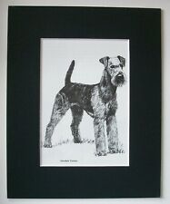 Airedale Terrier Dog Print Gladys Emerson Cook Bookplate 1962 8x10 Matted