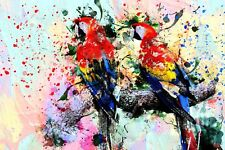 ABSTRACT VIBRANT PARROT COLOUR SPLASH CANVAS PICTURE POSTER UNFRAMED 2399