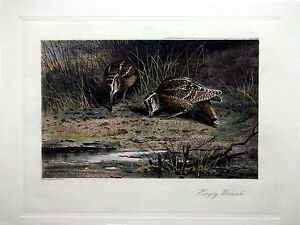 Archibald Thorburn - Hungry Woodcock - Hand Colored (Restrike Etching) game bird