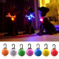 Mini Pet Kitten Puppy LED Safety Night Light Pendant Keyring Flashing Collar Tag
