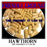 HAWTHORN BERRY Powder Potency The Freshest it Can Be  Fresh 100 Capsules 500 mg