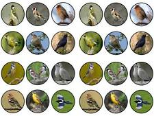 24 cake topper garden birds ornitholigy twitcher uk cupcake party edible paper