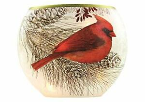 """Stony Creek - Frosted Glass - 7"""" Oval Lighted Vase -Cardinal, Branch & Pinecone"""