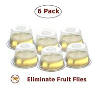 6 Pack Fruit Fly Trap   Safe, Non-Toxic with No Insecticides or Odor, Eco Friend