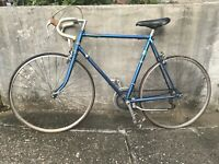 Vintage Campagnolo Bicycle Road Bike 22""