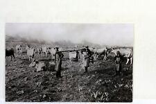 1307 CPSM 12 AVEYRON   AUBRAC BURON  FRANCE POSTCARD PHOTO VERITABLE