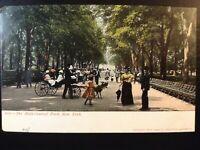 Vintage Postcard>1901-1907>Central Park>The Mall>New Yorkk City>N.Y.