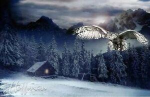"Hoffman Call Of The Wild Winter Woods Cabin Owl Quilt Panel 27"" x 43"""
