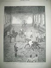 CHEVAUX MILITAIRES VOLTIGE AU MANEGE EGYPTE LE CHOLERA GRAVURES 1883