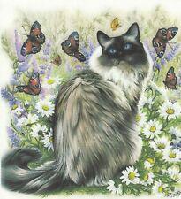 1 Lunch Papier Serviette Napkin (RM561)  schöne Langhaar Katze m. Schmetterlinge