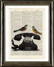 Old Antique Book page Art Print -Vintage Telephone & Birds Dictionary Wall Art