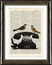 LIBRO antico vecchio pagina Art Print-Vintage telephone & Birds Dictionary Wall Art