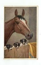 Horse in a Barn With Three Puppies  Postcard
