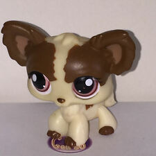 Littlest PetShop CHIEN PAPILLON MARRON ET CREME 385 O36 DOG Pet Shop