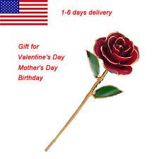 Love Forever Long Stem Dipped 24k Gold Foil Trim Rose Gift for Valentine's Day